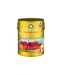 WOODTECT สีย้อมไม้วูดเทคเงา-สีสักกป. WG-101