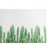 NICE รูปภาพพิมพ์ผ้าใบ Plant  ขนาด  70x50 ซม. (ก.xส.) (ต้นกระบองเพรช) C7050-27