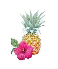 NICE รูปภาพพิมพ์ผ้าใบ Plant  ขนาด  30x40 ซม. (ก.xส.) (สับปะรด) C3040-1