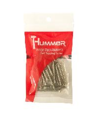 HUMMER สกรูเกลียวปล่อยหัว  8X2นิ้ว (25ตัว/แพ็ค)  P-HM820 สีโครเมี่ยม