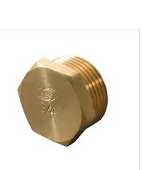 PP ปลั๊กอุด(ทองเหลือง) ตัวผู้(เกลียวนอก) 300653 ทองเหลือง