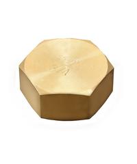 PP หมวกอุด(ทองเหลือง) ตัวเมีย (เกลี่ยวใน) 1/2 นิ้ว 300684 ทองเหลือง